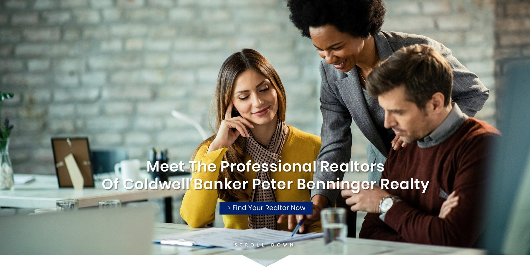 Meet Our Professional Realtors
